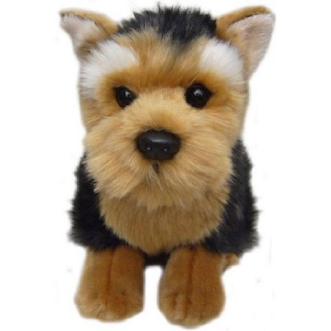 Yorkshire Terrier, gift wrapped, not gift wrapped with or without engraved tag